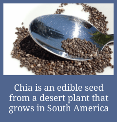 What-Is_Chia-Seeds