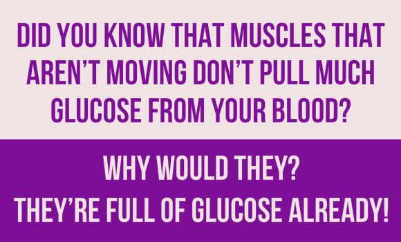 Muscles Not Moving No Glucose From Blood