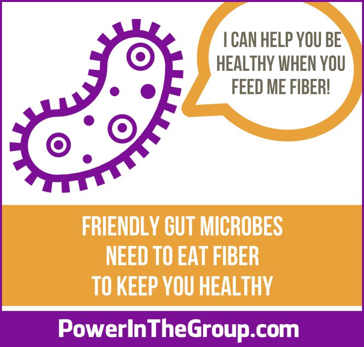 Fiber Feeds Friendly Gut Microbes