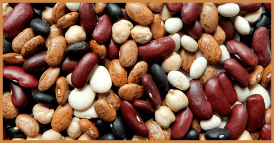 Beans and Blood Sugar Control
