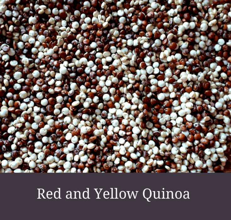 Red and Yellow Quinoa