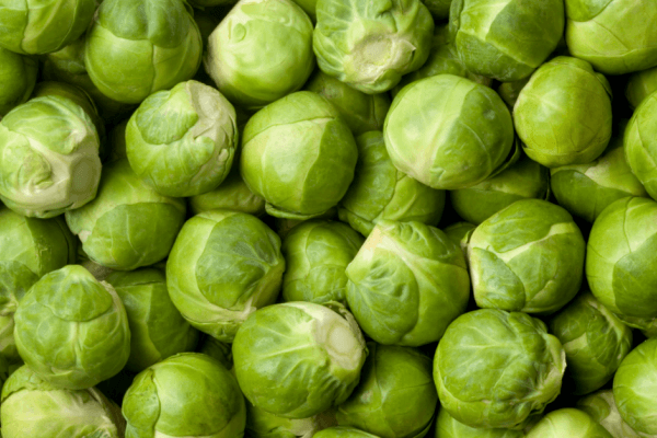 Diabetic Friendly Roasted Brussels Sprouts Raw Sprouts
